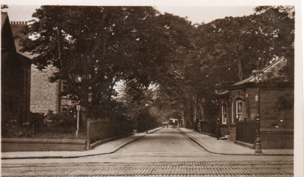 Gosforth Heritage Postcard of The Drive taken from Gosforth High Street
